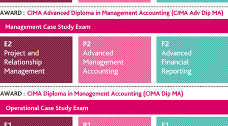 CIMA Management Objective Tests Syllabus