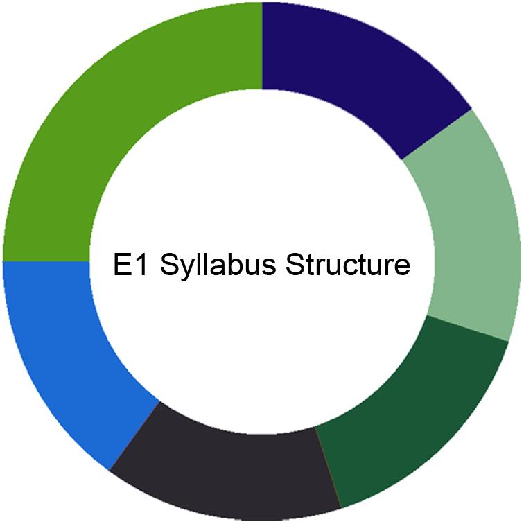 CIMA E1 Syllabus