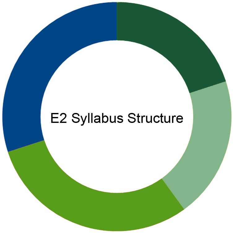 CIMA E2 Syllabus
