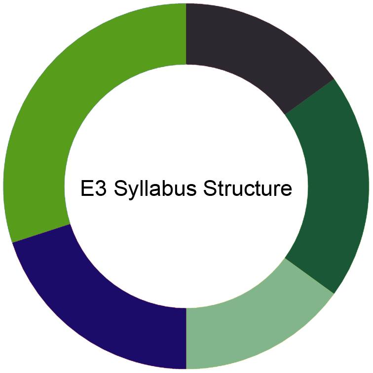 CIMA E3 Syllabus
