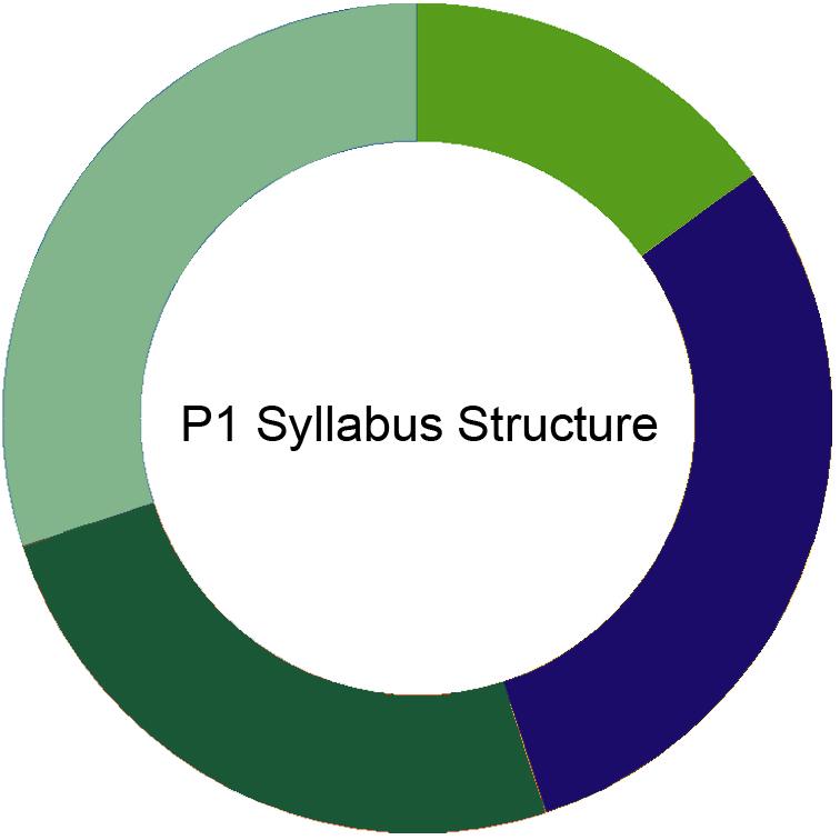 CIMA P1 Syllabus