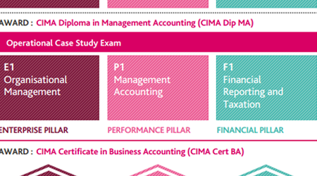 CIMA Operational Case Study Syllabus
