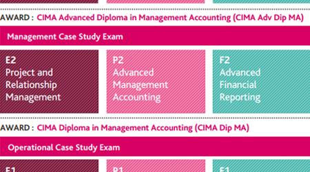 CIMA Management Case Study Syllabus