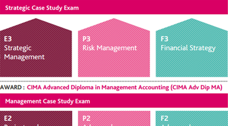 CIMA Strategic Case Study Syllabus